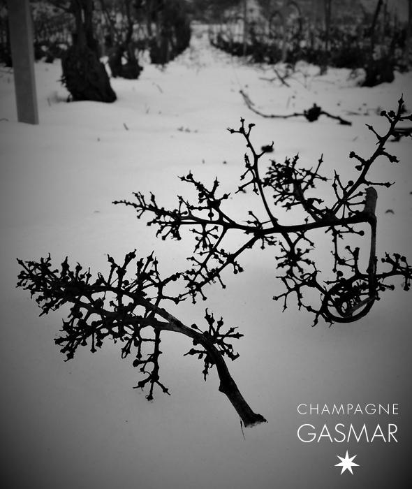 Rafle dans la neige champagne Gasmar